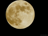 """My one & only """"moon shot""""."""