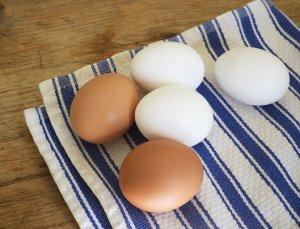 7c7f52d3_egg.xxxlarge